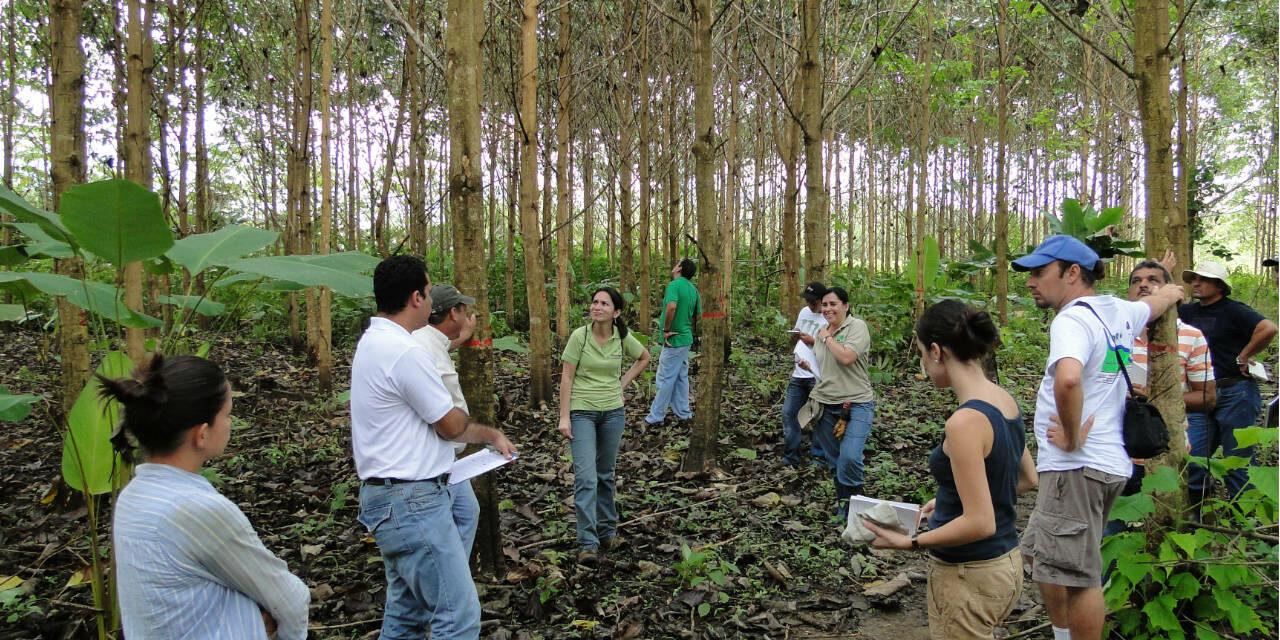 "Ingeniería en Gestión Ambiental<span class=""wtr-time-wrap after-title""><span class=""wtr-time-number"">4</span> min de lectura</span>"